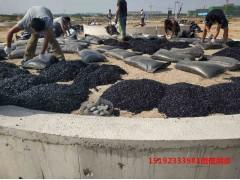江西抚州沥青砂罐底施工不停摆体验无与伦比