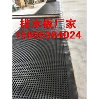 供应江西南昌楼顶绿化排水板/1.6公分排水板价格