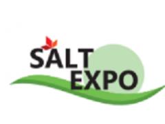 2021上海盐博会 2021餐饮食材 调味品 2021包装展