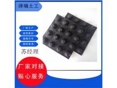 北京14高分子防护排蓄异形片-复合排水板