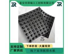 深圳30高4公分蓄排水板护坡复合排水网