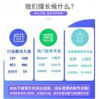 手机网站建设网页设计制作网站UI网站建设企业官网定制开发